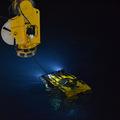 ROPOS night dive