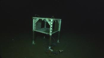 APL test frame deployed at Hydrate Ridge