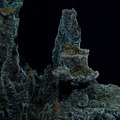 Castle Vent at Axial Seamount