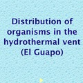 Lim Yih En: Distribution of organisms on El Guapo